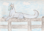 Sittin' on a fence. by TheAlbinoBunny