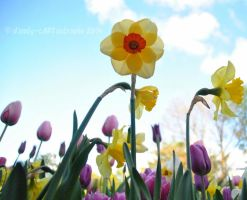 Shades Of April 58 by dandy-cARTastrophe