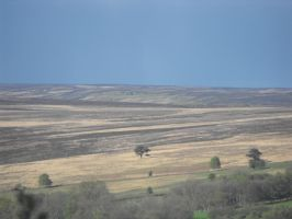 Moors pic two by 28CharactersLater