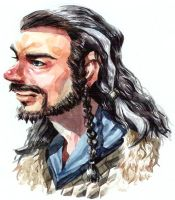 Thorin Oakenshield by soodal