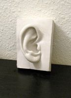 Ear sculpture by EvanCampbell