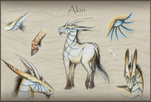 Akin Reference Sheet by Saraais