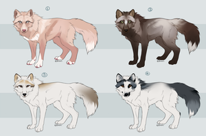 Quick Fox Adoptables Paypal Auction - CLOSED by Hlaorith