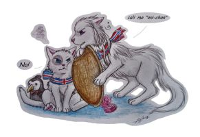 Nekotalia: Nordic brother by Marshcold