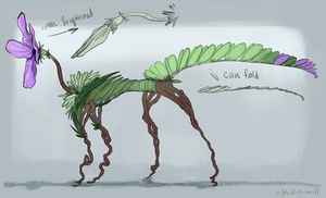 Fern (EDIT: open species) by Whip-o-will
