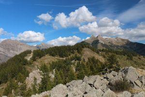 Back from Alpine Paradise by Momotte2