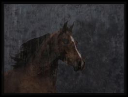 Fog Horse by tastybedsore