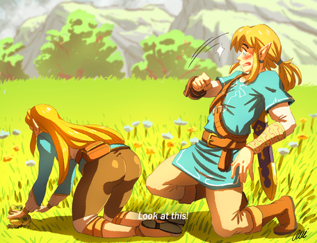 Zelda and Link - Look at this! by oNichaN-xD