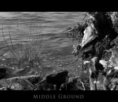MIDDLE GROUND by theblueberrybush