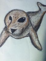 Baby Seal by EmoAries
