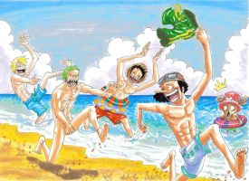 one piece, beach by heivais