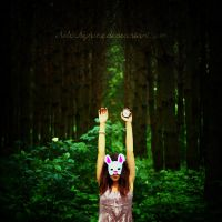 follow the rabbit by theluckynine