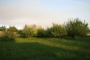 Garden trees and grass stock #1 by croicroga