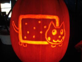 Nyan Cat Pumpkin - Nyankin by RebelATS