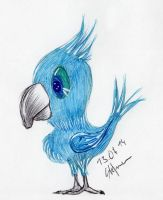 blue parrot by BlackEyesSnowAngel
