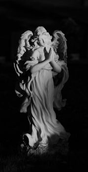 Guardian Angel by soundguy03