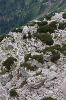 Mountain Landscape 3 by archaeopteryx-stocks