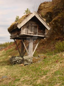 Early Defensive Home  - Trondheim Norway by PaulHFresco
