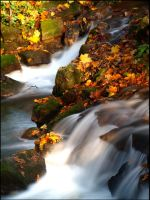 Waterfall at Fall by AgiVega