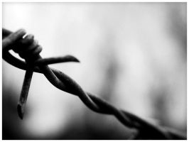 Barb Wire by Stinky9