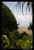 Tropical Beach by aFeinPhoto-com