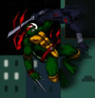 Raph is in a fight by PiccoToxin