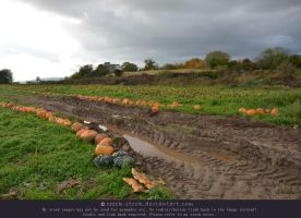 Pumpkins 10 - Muddy track by ceeek-stock