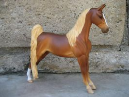 Stone Saddlebred by morbidweasel