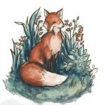 Fox by Evanira