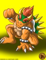 Bowser by Lysozyme