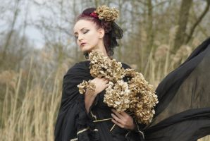 Stock - Gothic rotten flowers dreaming by S-T-A-R-gazer
