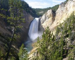 Yellowstone Lower Falls on Yellowstone River by swashbuckler