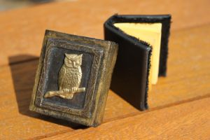 Altered matchbox with miniature book. by izibel1