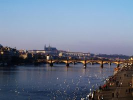 Prague view by Vrbize