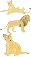 Semi - realistic lions by Mganga-The-Lion