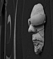 ::the face in the wall:: by TCM73