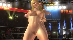 Lady Helena vs. Tina fight DoA 5 LR nude 327 by WujekFu