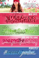 Selena G lyrics PNG by findyourheart