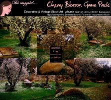 Cherry Blossom Grave Pack by Bnspyrd