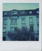 polaroid by Ungeheuer