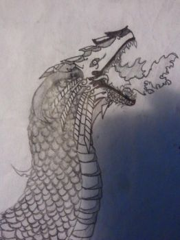 Draconis Rex Closeup by Theillst
