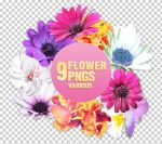 Flower PNGs - 3004 by Missesglass