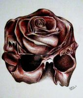 Skull Rose by lovexhatexlove
