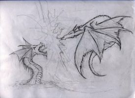 Duel of the Drako by me-Kail