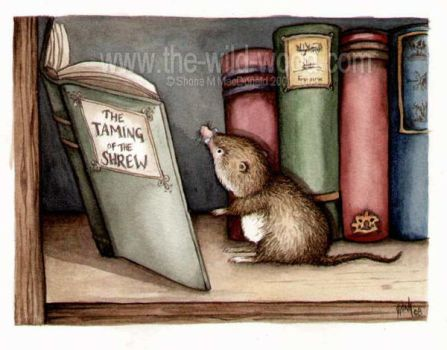 Library Shrew by WildWoodArtsCo