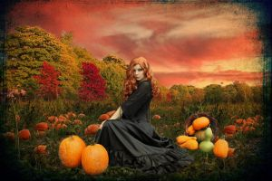 The Pumpkin Patch by 3punkins