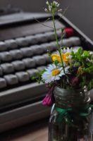 Flowers for a Writer by felinelife