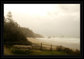 La Push by bypolar-bear