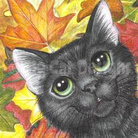 Fall Kitty by bigcatdesigns