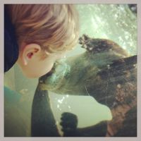 Otter Kisses by piratesofbrooklyn